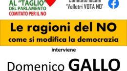 Domenico Gallo Velletri